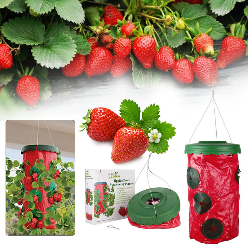 Strawberry Upside Down Hanging Planter System Outdoor 9 Holes  Planting(China (Mainland)) - Popular Strawberry Planters-Buy Cheap Strawberry Planters Lots