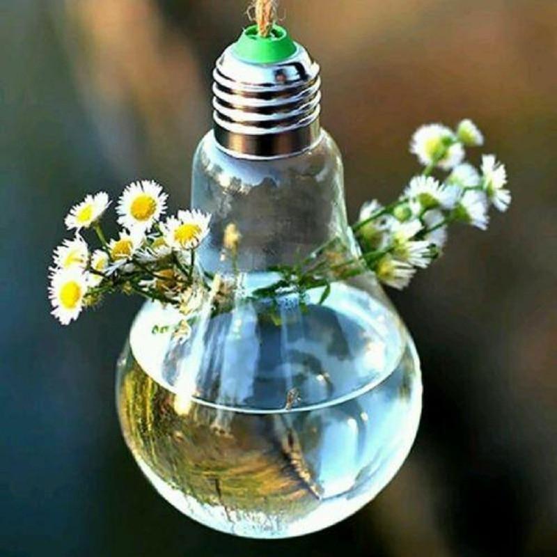 Soledi Bulb Hanging Glass Vase Terrarium Glass Containers