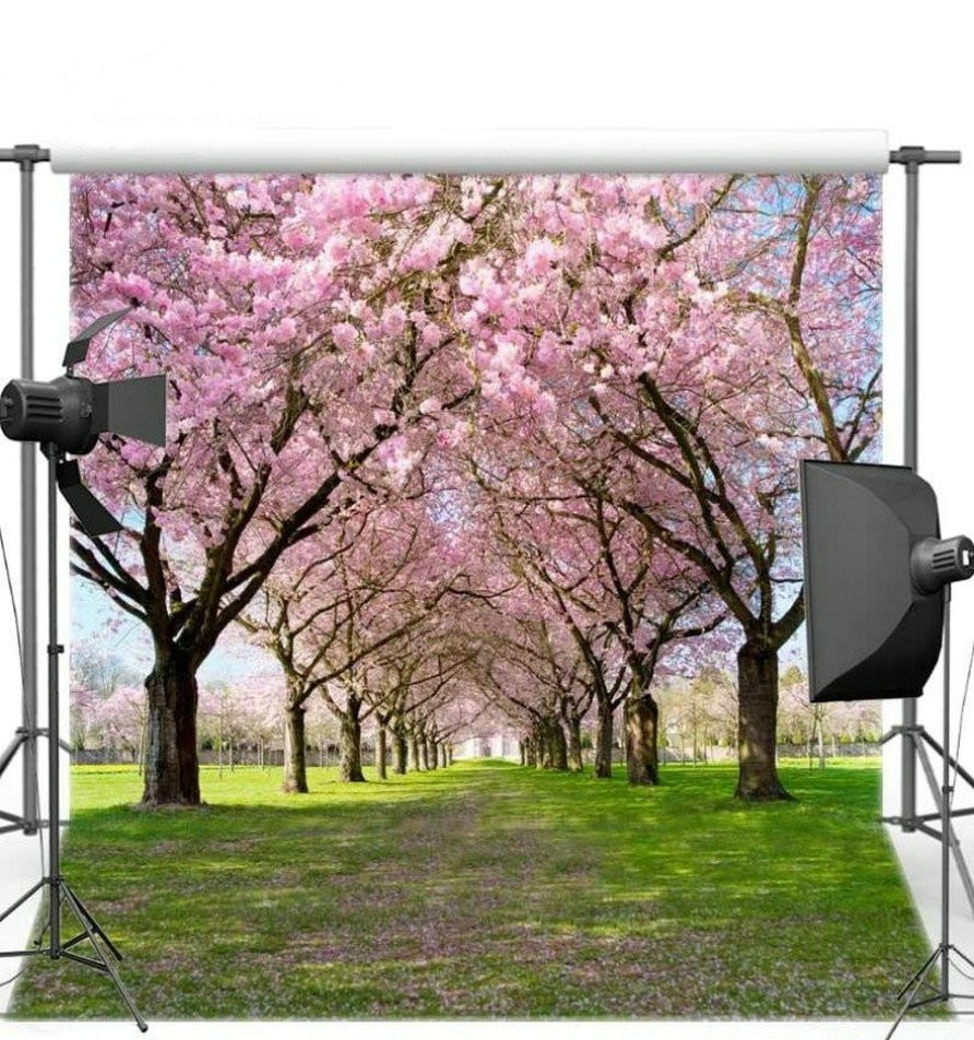 Flower Cherry Blossom Tree Grass Scene Background Vinyl Cloth High