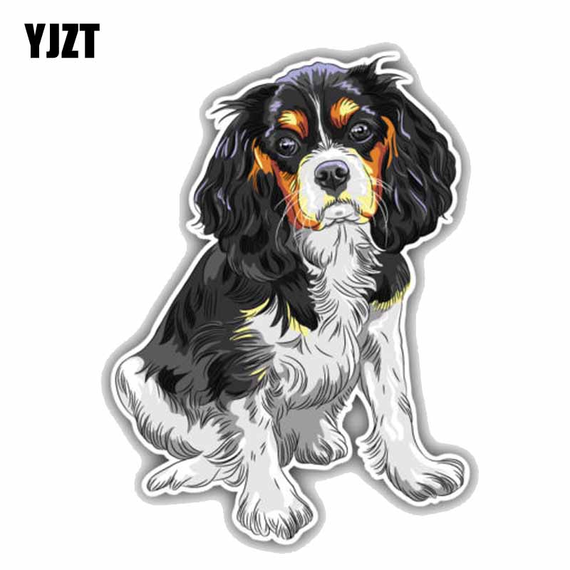 YJZT 11CMx15CM Sitting Cavalier King Charles Spaniel Breed Dog PVC High Quality Car Sticker C1-9074 tatonka cavalier black