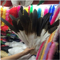 50 rare and precious natural pheasant feathers 15 60CM (6 24 inches) around the DIY decorative accessories feather accessories c
