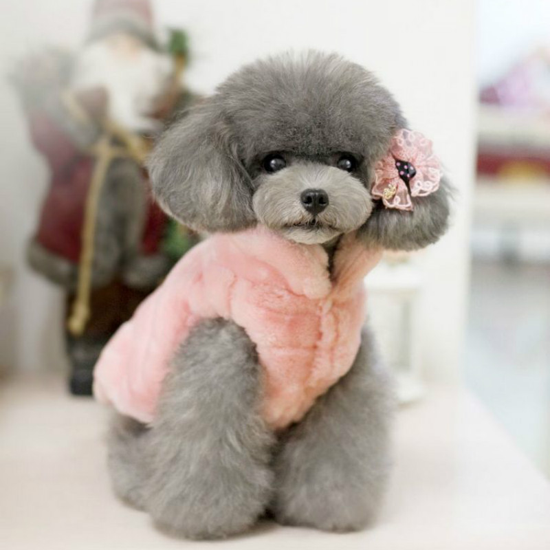 Dog Clothes Winter Poodle Yorkshire Chihuahua Clothing ...