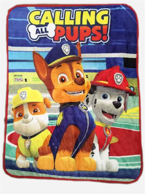 Nick Jr Paw Patrol All Paws on Deck Micro Raschel Blanket ...