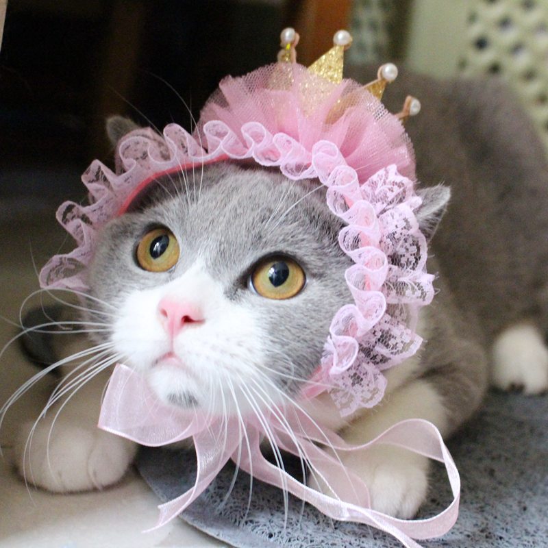 [mpk Cat Headwear] Beautiful Cat Hat, Pet Hair Accessories, Cat Headwear, Pet Birthday Hat, Cat Birthday Crown