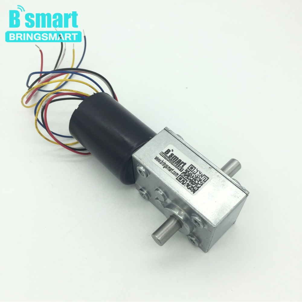 BringSmart BLDC Motor Top Quality 5840-3650 24v Brushless Dc Worm Gear Motor 12 Volt Double Shaft Gear Motor