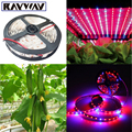 5Meters/Pack 5050 SMD Waterproof Soft plants led grow light Strip Tape 4:1 Red & Blue Aquarium Greenhouse Plant Growing Lamp