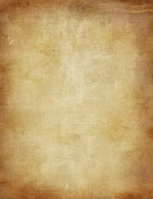 Old master foto photo background fabric fancy photography backdrops
