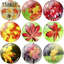 TAFREE 1pcs 25mm DIY Glass Cabochon Dome With Red Yellow Maple leaf Art Picture Charms Flatback Camo Jewelry Findings(China)