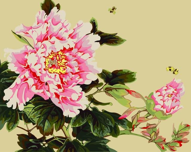 Hq Pivoine Rose Fleurs Peinture Par Numeros Naturel Fleur Dessin