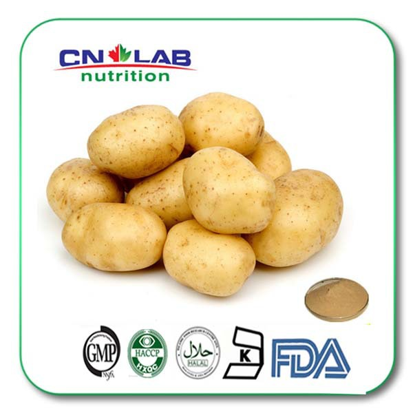 ФОТО Protein supplement High quality Potato extract 30:11kg Free shipping