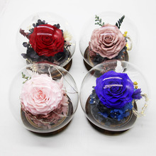 Eternal Flower Glass Cover Handmade ValentineS Day Gifts Durable Preservation Nude Pink Red Purple