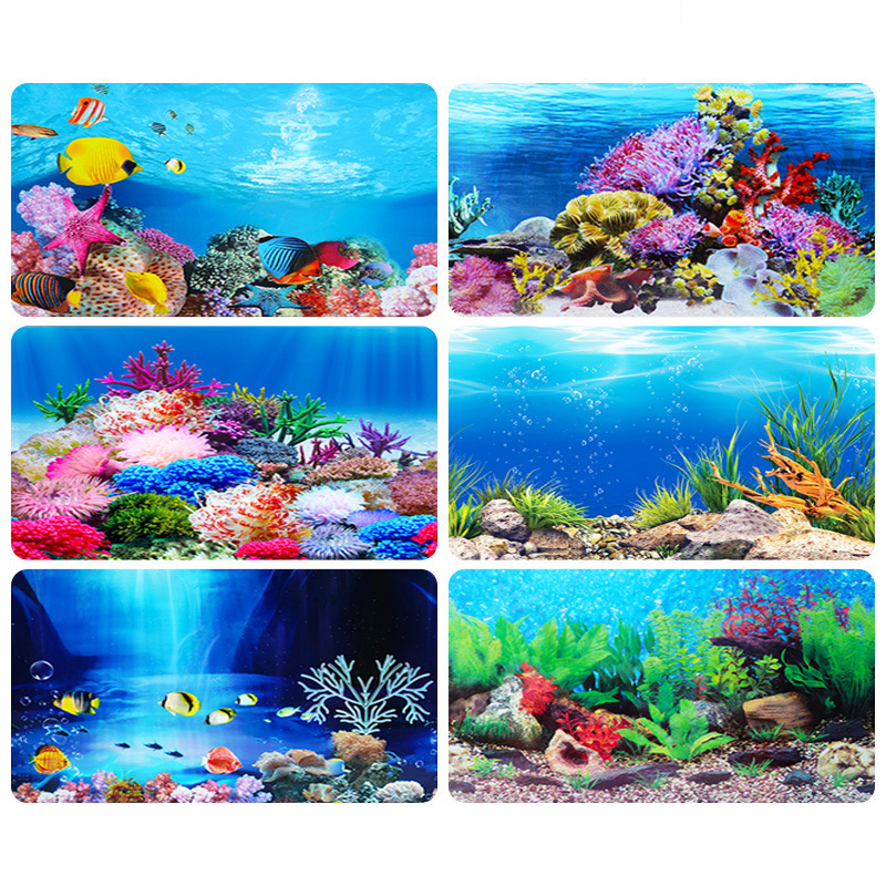 PVC Double Side Aquarium Poster Background Decoration Ocean Secen Aquatic Background Poster For Fish Tank Wall 30/40/50cm Height