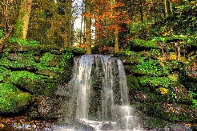paesaggi pietre naturali cade moss vegetazione paesaggio
