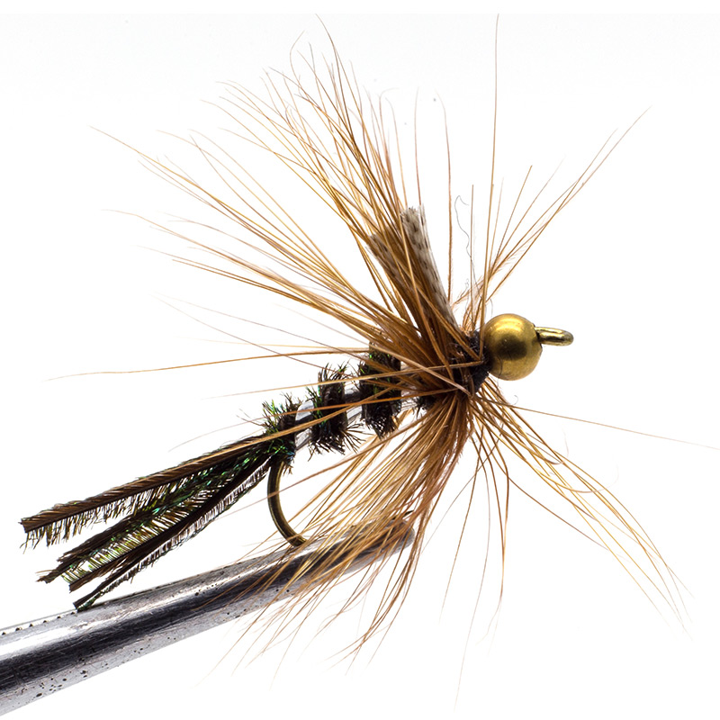 Gold head Wet flies fly fishing set 24 PCS 10# for trout salmon pheasant tail Brass Bead Steel Head Wet fly lures kit Flyfishing