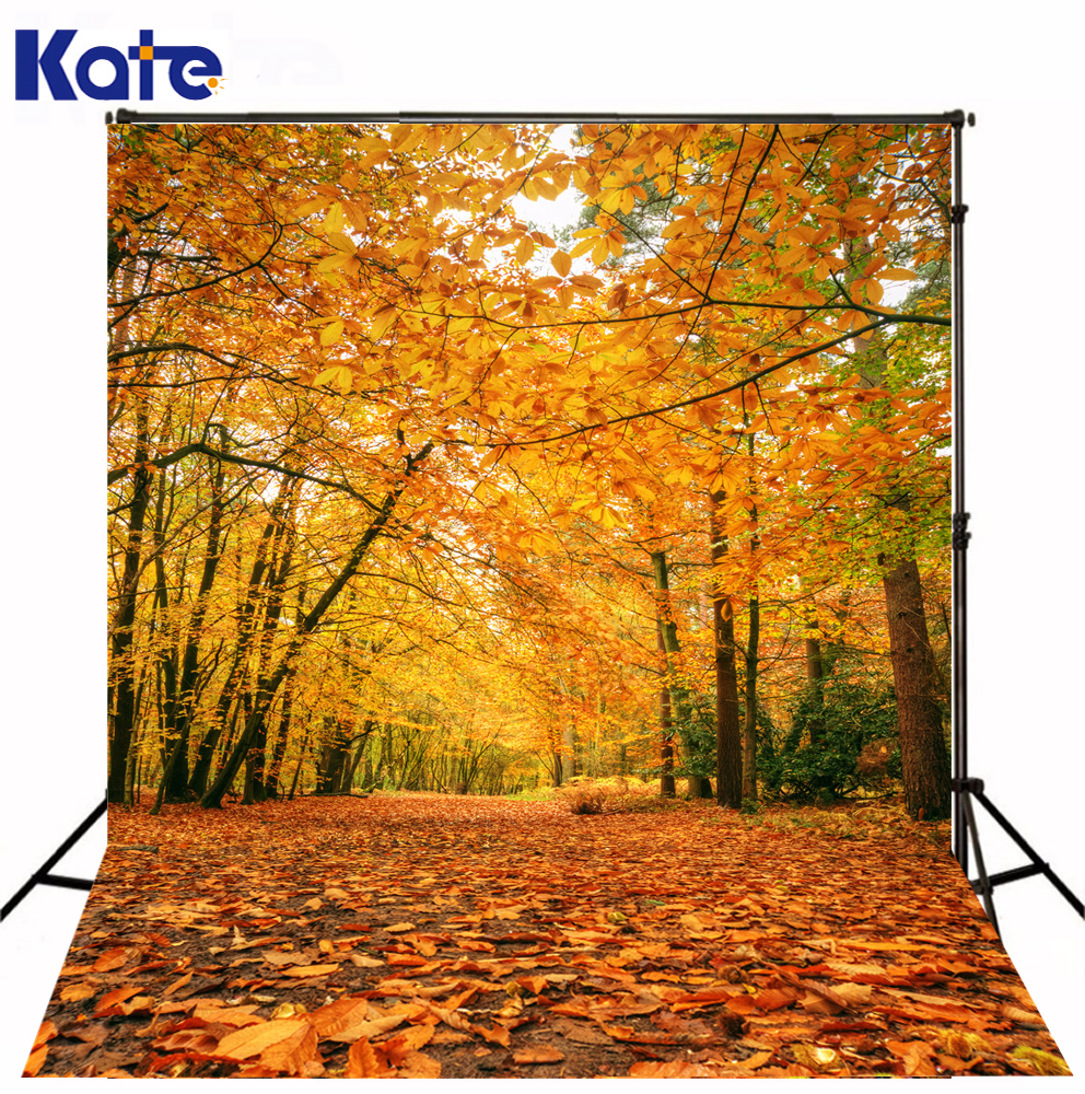 Kate Digital Printing Natural Scenery Photography Backdrop Autumn Defoliation For Outdoor Wedding Photography Background kate digital photography backdrop