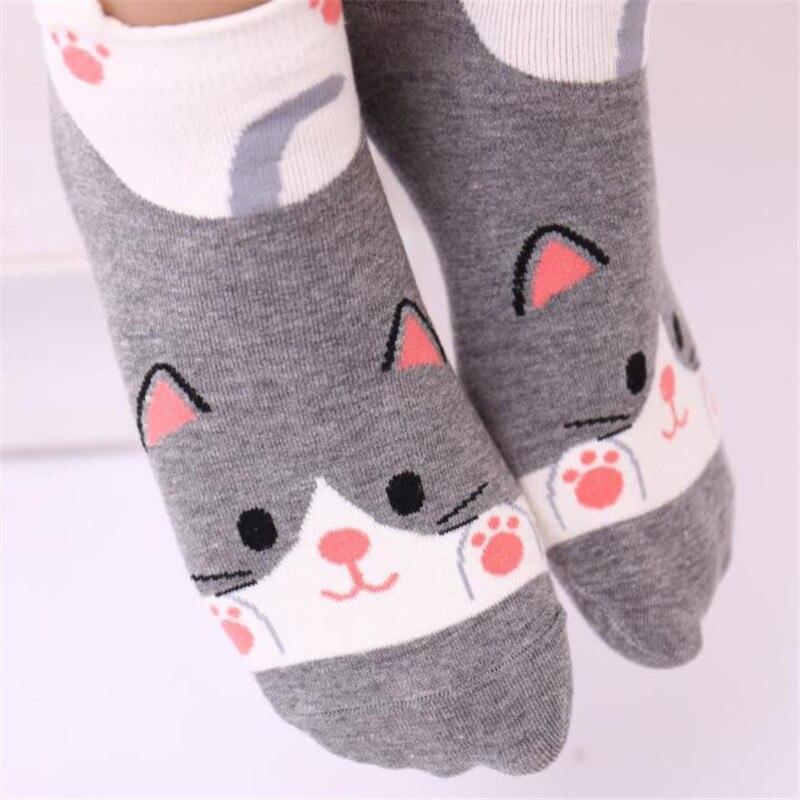MYORED 5pairs cartoon female socks cotton socks slippers creative panda bear novelty gift socks Calcetines de dibujos animados in Sock Slippers from Underwear Sleepwears