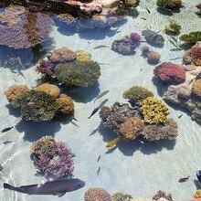 Coral Tropical Fish Ocean 3D Bathroom Floor Sticker Painting