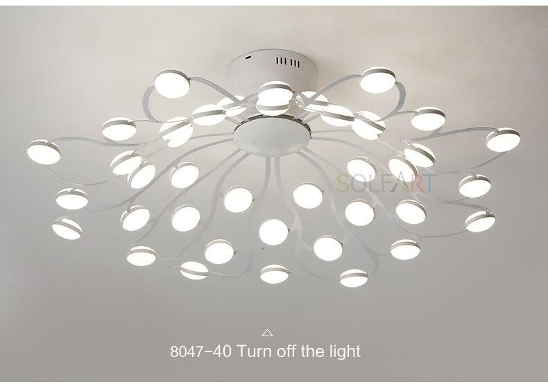 8047-LED Ceiling Light Sconce Luminaria Chandelier Ceiling Avize Light Fixtures Ceiling Lamp_11