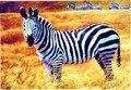 3D 500 Головоломки пейзаж лесной животных зебра лобзик головоломки детские раннего интеллектуальные разработки образовательных
