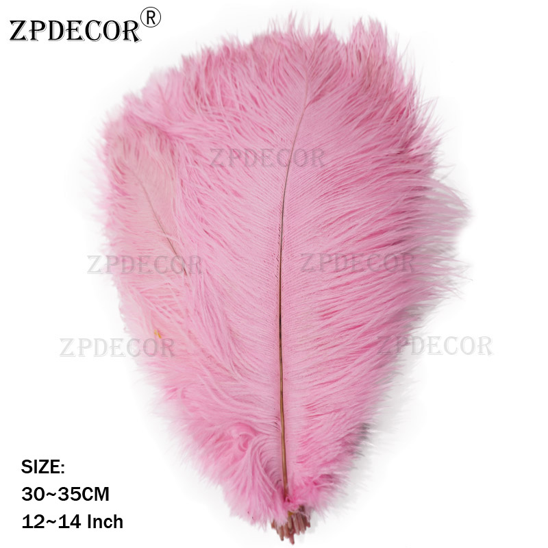 30-35 centimetri di piume di struzzo30-35 centimetri di piume di struzzo