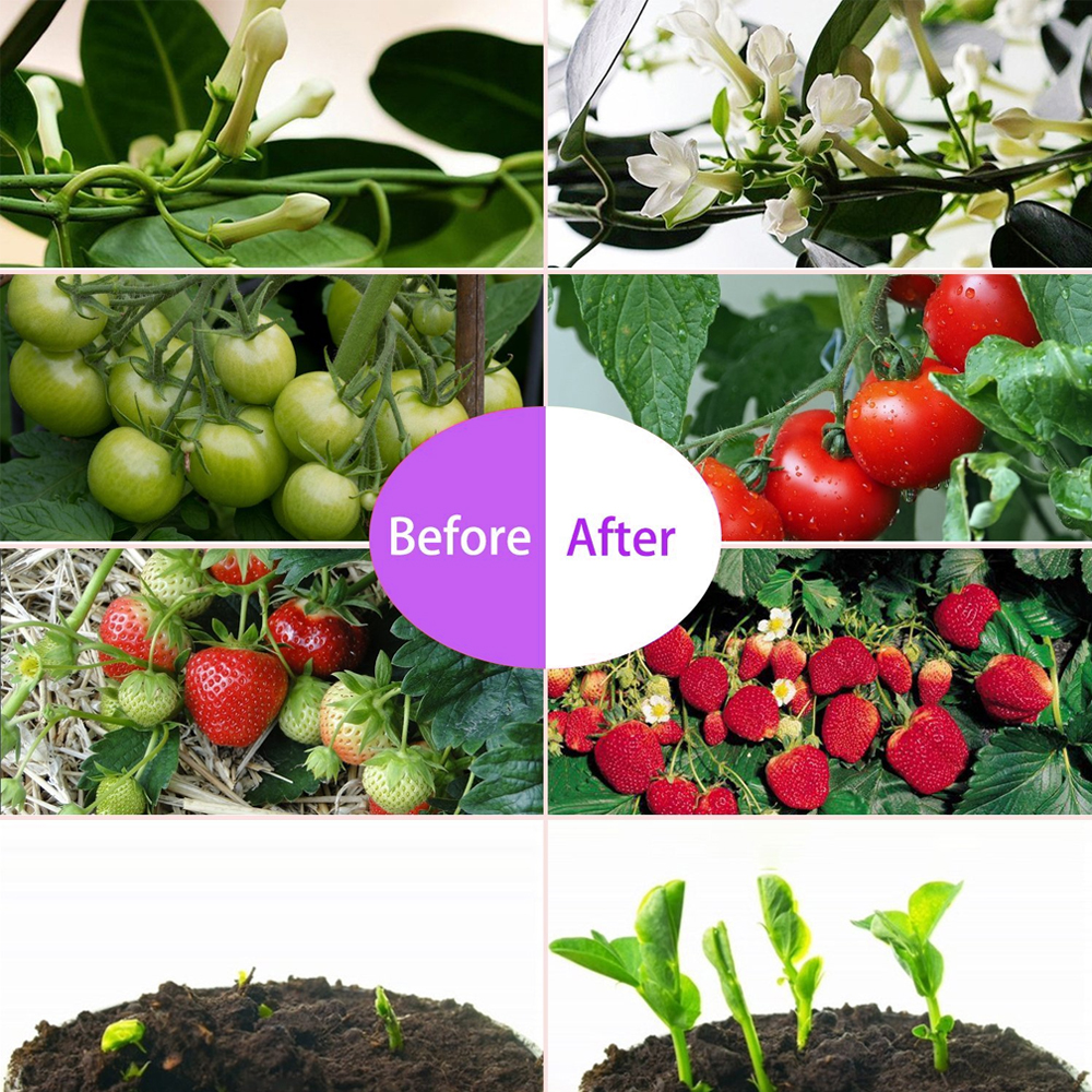 before after2