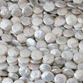 White natural cultured freshwater pearl beads coin 14mm round cake fit necklacce bracelet jewelry making 15inch B1353