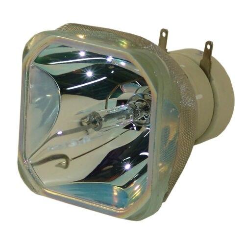 POA-LMP132 for SANYO PLC-XW300 PLC-XE33 PLC-XW250 PLC-XR201 PLC-XR301 PLC-XR271 PLC-XR251 Projector Lamp Bulb Without housing plc srt2 od04