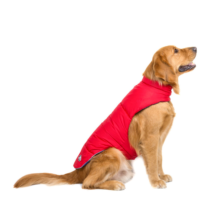 Dog Clothes for Large Dogs (14)