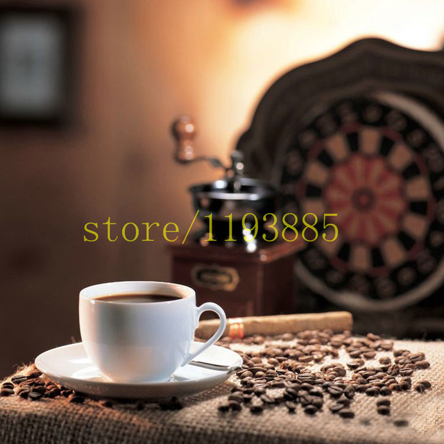 Coffee Bean Bonsai Tree Plant Seed  for home garden planting