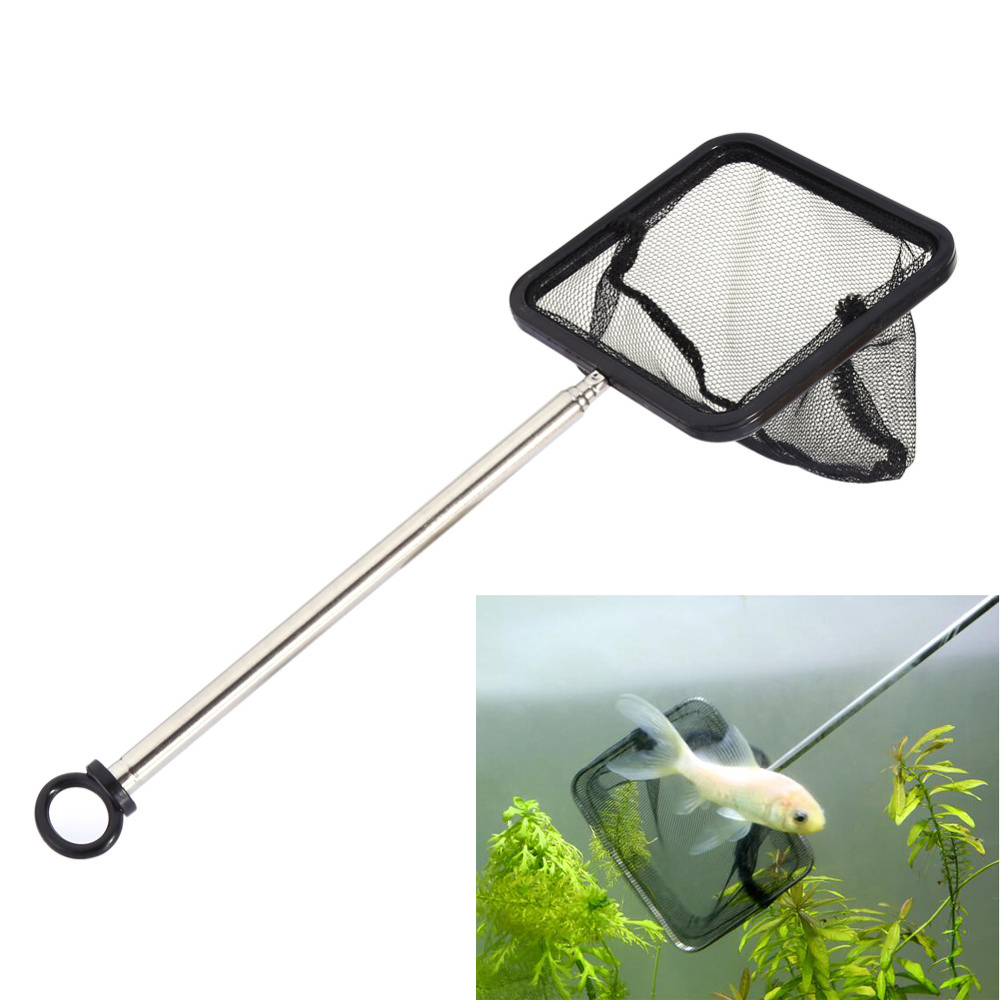 Small nano aquarium fish tank tropical - Aquarium Net Extendable Shrimp Small Betta Tetra Fish Tank Net Square New Arrival Free Shipping