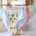 6 pçs/lote 3D Animal print gato Sexy mulheres briefs bowknot lace triângulo cuecas de algodão confortável calcinhas femininas roupa interior