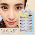 New high quality 100% hand made transparent plastic terrier false eyelash 2set/lot(10pairs) natural long brown eyelash extension