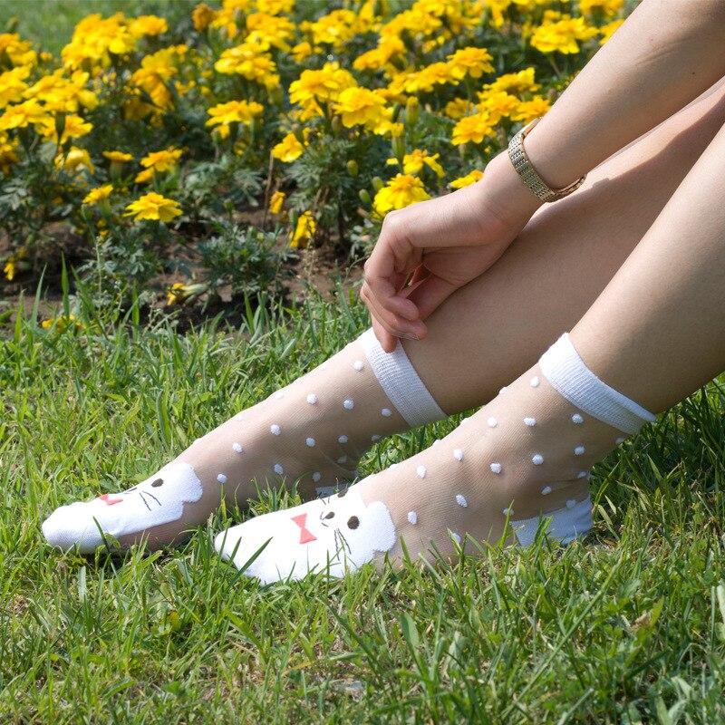 5 párů průsvitné křišťálové hedvábné tečky princezna anti hák drát sexy jaro léto zbrusu nové vysoce kvalitní krajkové dámské ponožky