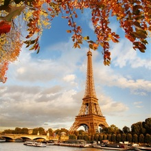 Laeacco Eiffel Tower Leaves Shore Photography Backgrounds Vinyl Digital Customized Photographic Backdrops Props For Photo Studio
