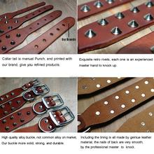 Best Genuine Leather Pet Dog Collars For Small Medium Large Dogs