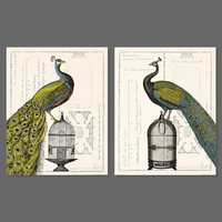 Animal Picture Green Peacock Feather Decoration Birds Birdcage Canvas Painting Wall Art Living Room Printed Home