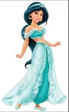 New 2015 Custom Made Princess Jasmine Costume Adult Dress Party Wedding Women Cosplay Halloween