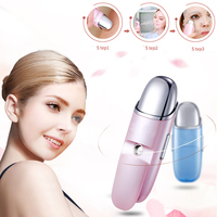 Derma Energy Face Beauty Care Vibration Pulse Firming Facial Moisturizing Massge Tool Water Mist Anti Aging