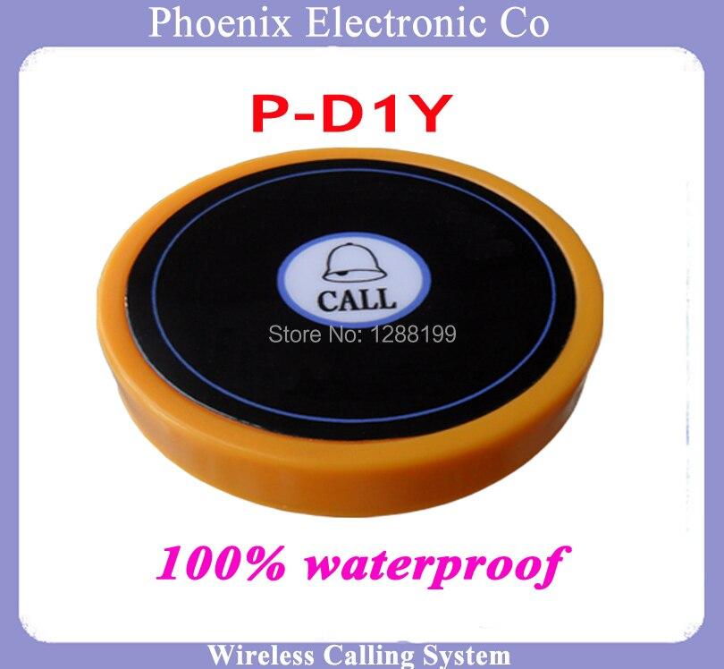 D1-Y CALL