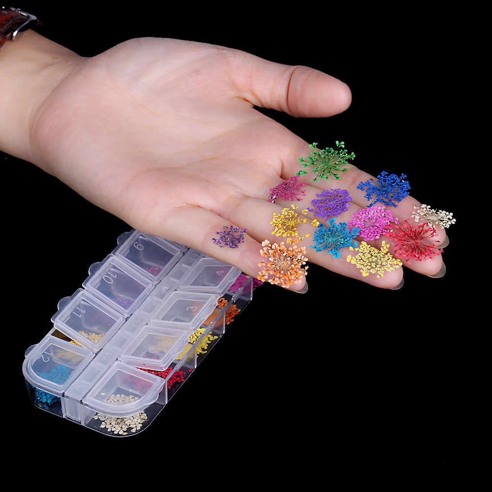 36Pcs 12 Patterns 3D Dry Flowers Stickers Real Dried Flower Nail Art ...