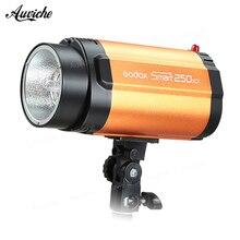 GODOX Smart 250SDI Strobe Photo Flash Studio Light 250w Pro Photography Studio Lamp head 110V 220V