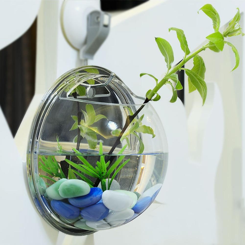 Popular aquarium betta buy cheap aquarium betta lots from for Cheap betta fish