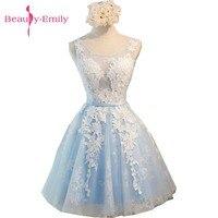 Beauty Emily Light Sky Blue Lace Short Prom Dresses 2017 Tulle A Line Applkiques Lace Up