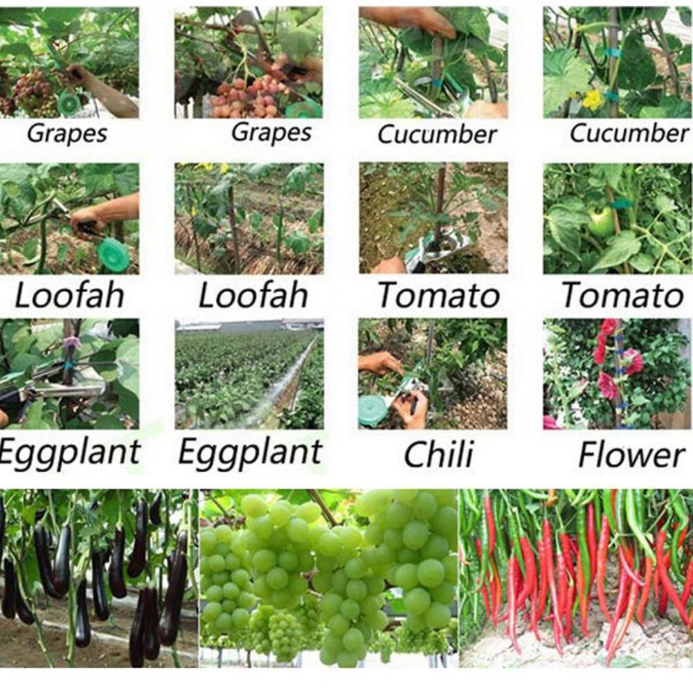 10000st Tapetool Häftstift Tapener Fruit Tree Binder Spikplantsgren - Trädgårdsredskap - Foto 5