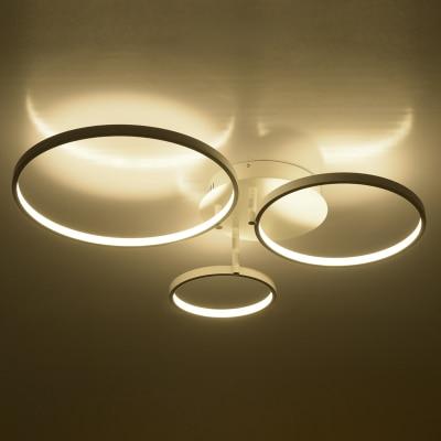 Modern Ceiling Led Circle Flush Mount Light