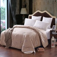 Cmael Hair Wool Winter Comforter 220 240cm Autumn Quilt King Queen Duvet Blanket 200 230cm Modern