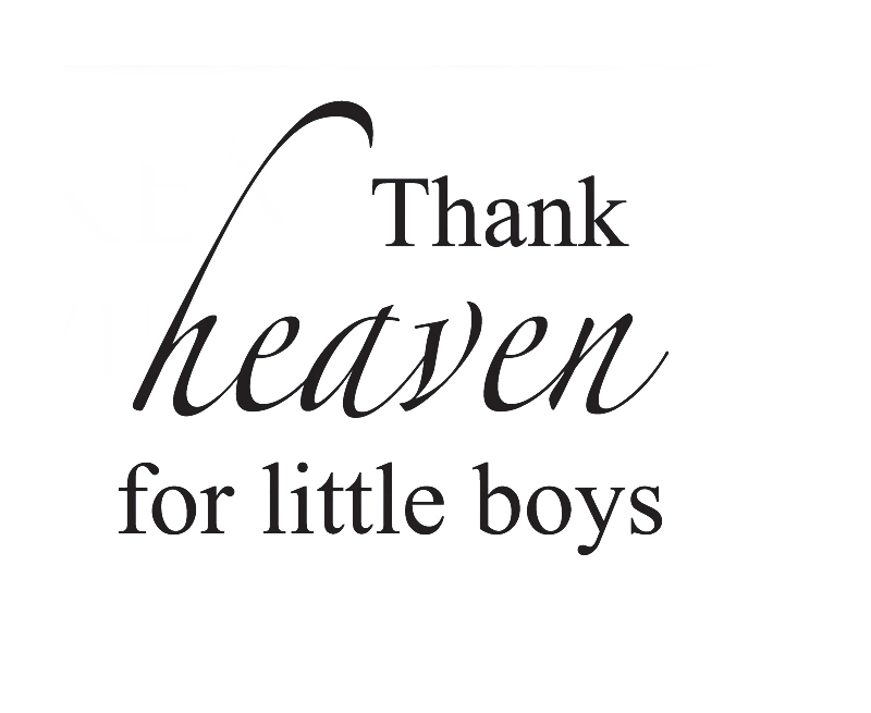 Wall Quote Decal Sticker Vinyl Art Thank Heaven for Little