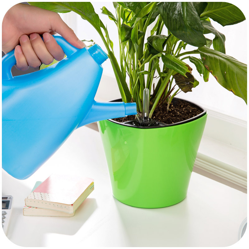 Watering Can Home Decor