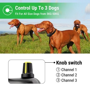 Image 5 - Petrainer 900B 1 Rechargeable and Waterproof Remote 1000m Electric Dog Trining Collars  Vibrate & Electric Shock Collar For Dogs