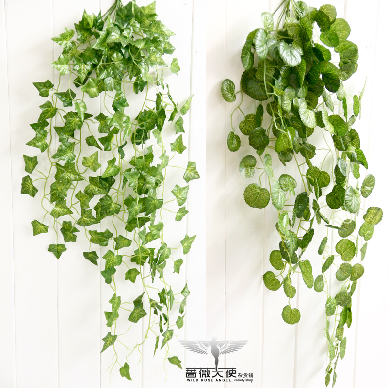 Free shipping Rustic wall ivy parthenocissus rattan 1.5 diaolan